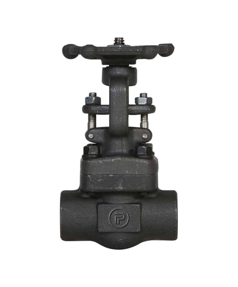 Powell Valves Check Valve