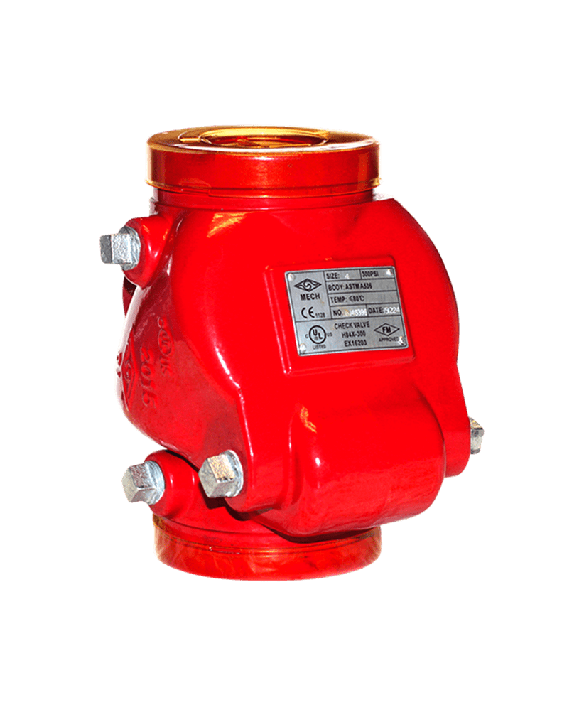Grooved Swing Check Valve